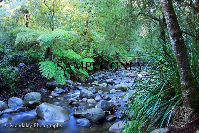 Yarra Valley stock photo - Mandalay Photography