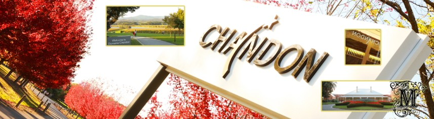 Promotional photo, Yarra Valley Winery|Domaine Chandon - Mandalay Photography