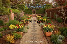 Cloudehill, Dandenong Ranges stock photo - Mandalay Photography