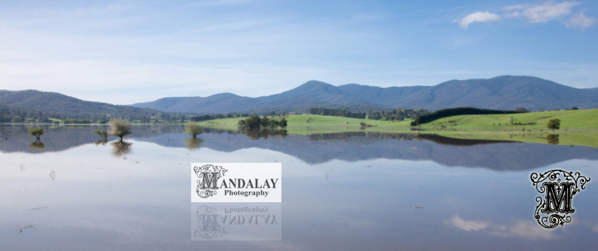 Yarra Valley Photography - Affordable, Professional Photos by Mandalay Photography