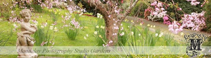 Mandalay Photography Studio Gardens, Healesville in the Yarra Valley